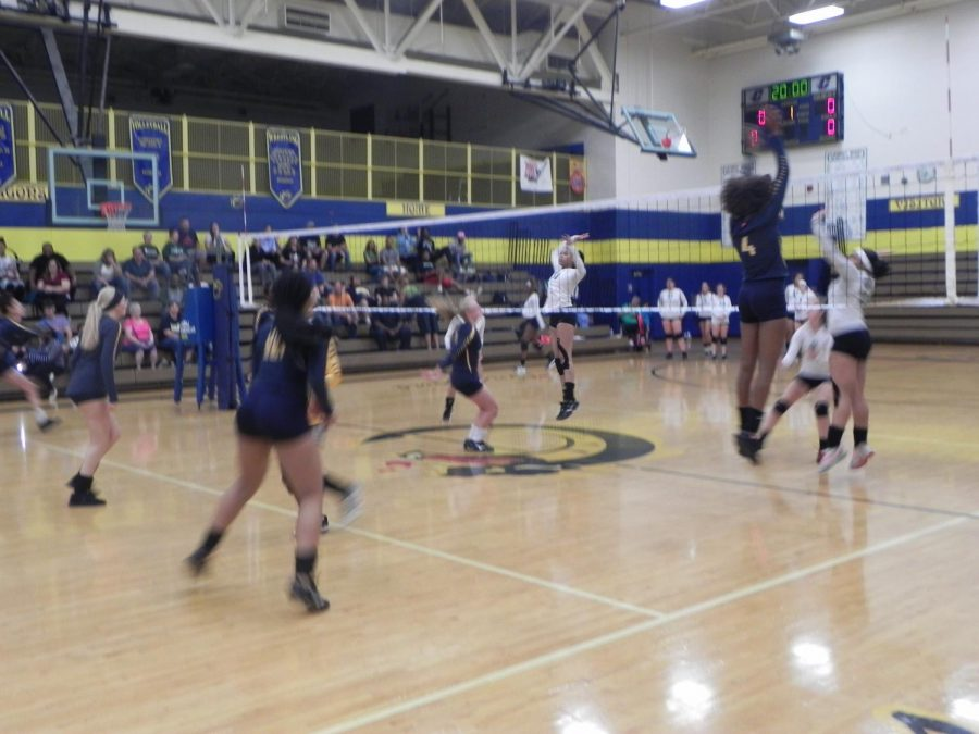 Lady Dragons varsity volleyball against New Haven Rockets